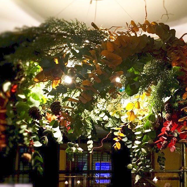 #noel #nouvelledeco #plants #accentstablebourse #restaurantparis